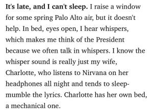 Nirvana short story
